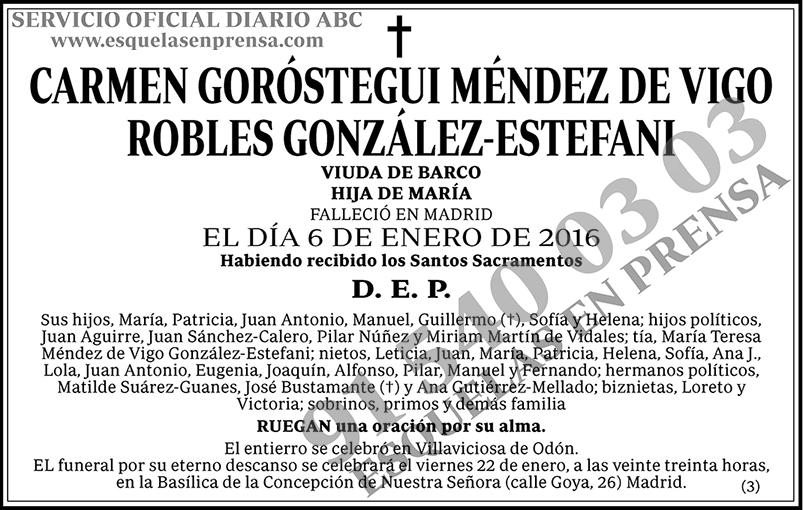 Carmen Goróstegui Méndez de Vigo Robles González-Estefani